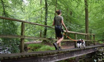 Promenade GPS avec rivières de montagne