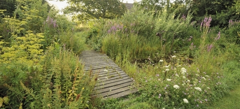 vilda-76580-natuurlijke-tuin-rollin-verlinde-800-px-51877.jpg