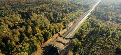 vilda-80376-ecoduct-in-het-zoninbos-yves-adams-1240-px-55088.jpg
