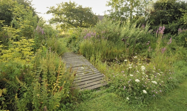 Un jardin sauvage qui suit les saisons ? C'est le pied !