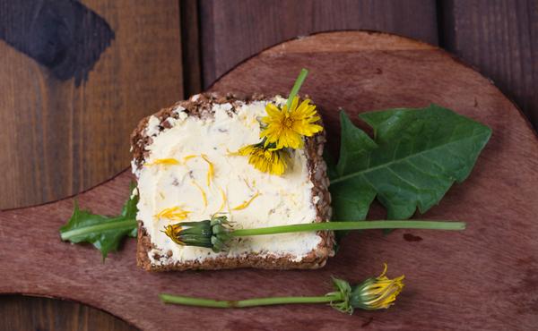 Défi flore n°1 : Cueillez des « mauvaises herbes » pour les transformer en plats délicieux