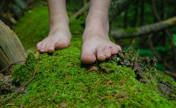 Défi flore n°2 : Explorez notre nature pieds nus