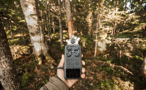 Défi faune n°4 : Ouvrez vos oreilles et enregistrez un bruit d'animal sauvage avec votre smartphone