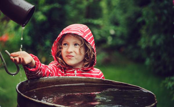 Défi flore n°4 : Etablissez un plan pour économiser l'eau au jardin