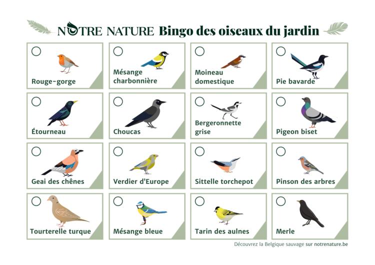 bingo-des-oiseaux-du-jardin.png