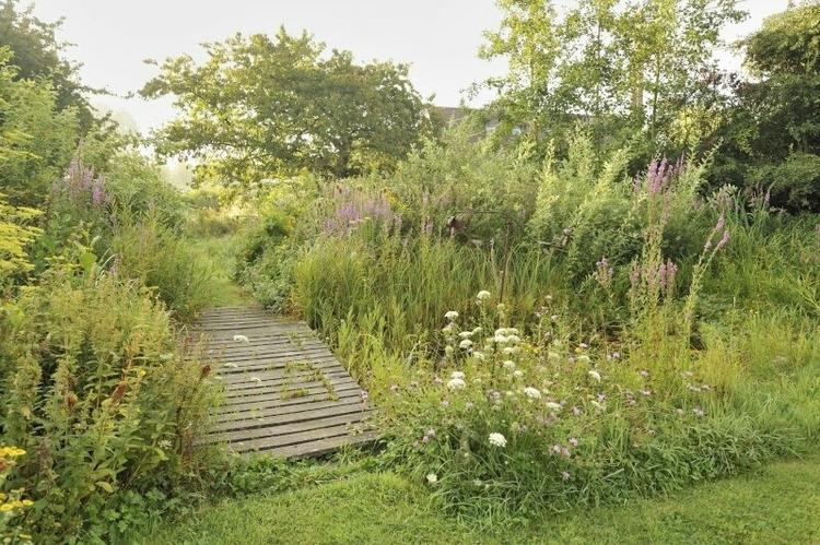 vilda-76578-natuurlijke-tuin-rollin-verlinde-800-px-47170.jpeg