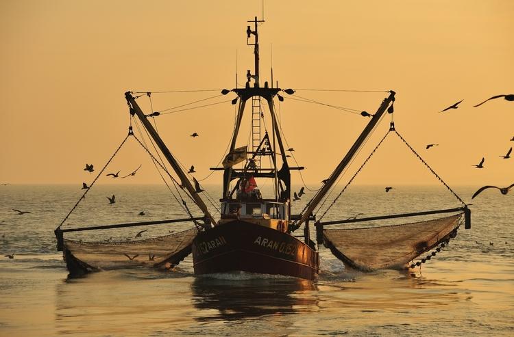 vilda-56055-korrende-vissersboot-yves-adams-1900-px-52511.jpg