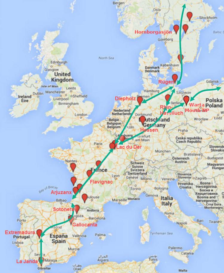 migratieroute-en-stopplaatsen-kraanvogels-zelf-2.jpeg
