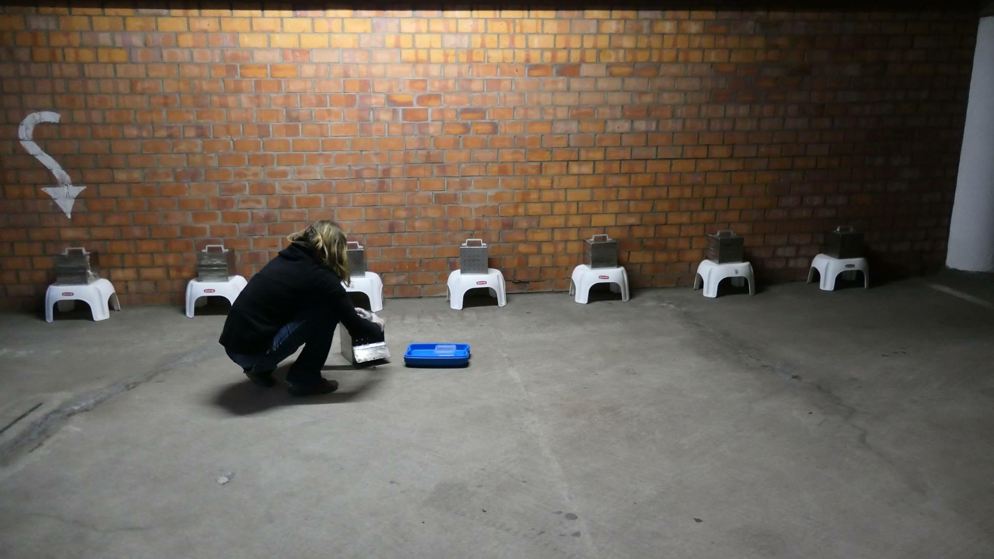 Ellen remplit des bacs d'effluves divers pour former des chiens de recherche écologiques