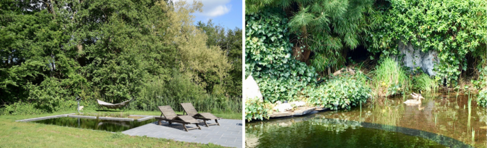 À gauche, un élégant étang dans un environnement naturel. À droite, un étang envahi par la végétation dans un jardin de la ville.