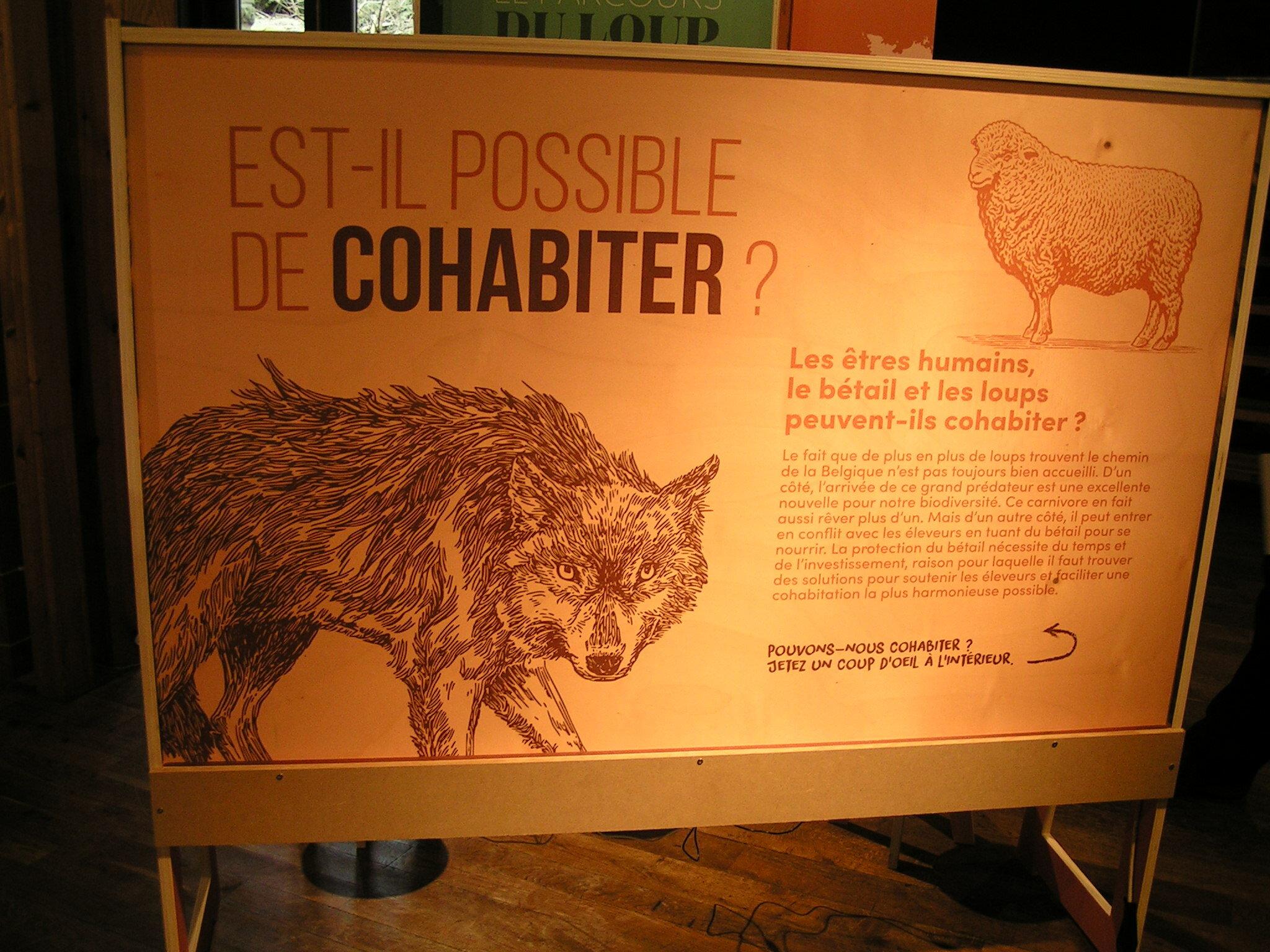 Cohabiter avec le loup