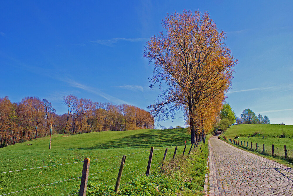 Le Koppenberg à Melden.