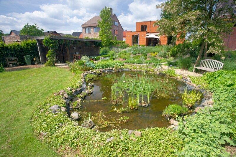Etang dans un jardin