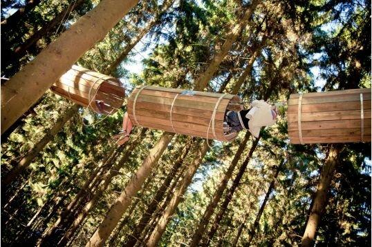 Accrobranche Forestia