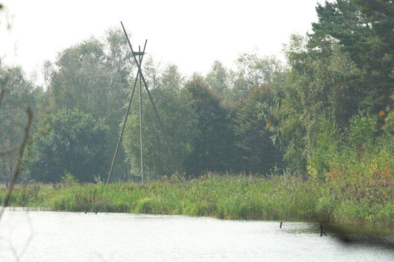 Nid en hauteur près d'un étang du Zilvermeer